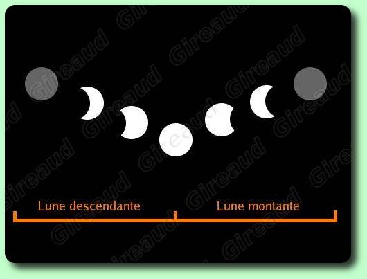 Jardiner avec la lune les dossiers - Lune montante et descendante ...